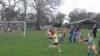 Junior sport (26)