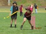 2017 T20 Cricket